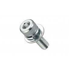 HEXAGON SOCKET CAP SCREW(W/SW,FW TRIVAL)